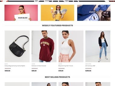 Wordpress eCommerce Store Demo