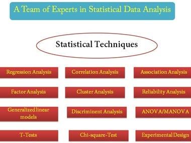 spss,r language,data analysis,pdf file convert,business plan