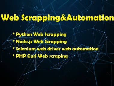 Web Scrapping Automation