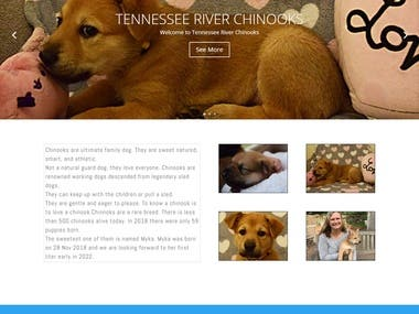 Website for Chinook dogs breeder