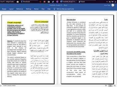 Feasibility Study Translation
