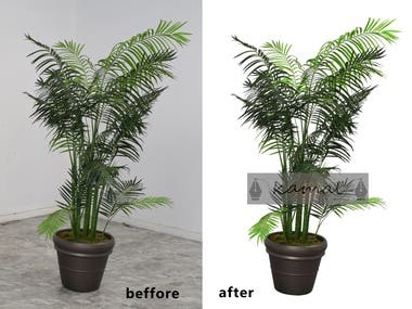 Clipping Path .Background Remover