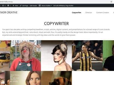 Design and develop a Portfolio website