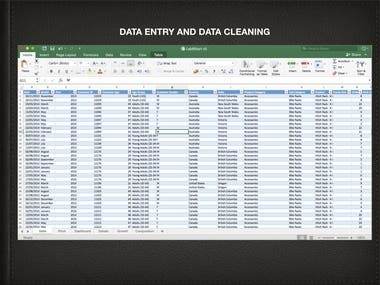 DATA ENTRY & DATA CLEANING USING EXCEL
