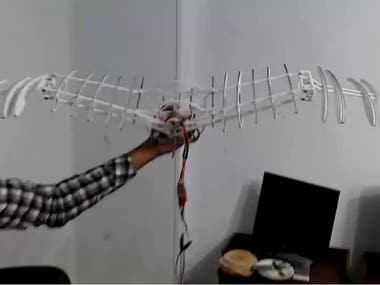 Robotic Bird