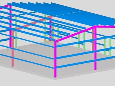 Steel and RC Structural Design and Detailing