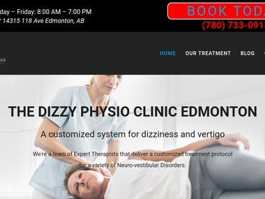 WordPress Website - https://www.dizzyphysio.clinic/