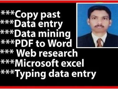 Data enryand ecxel expert