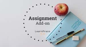 expert in assignments and article writing