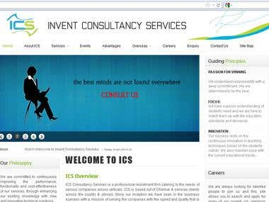 Website for Software Consultant