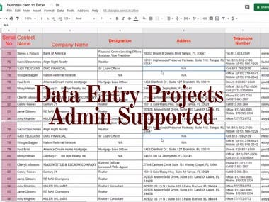 Data Entry Analysis As A Virtual Administrative Assistant