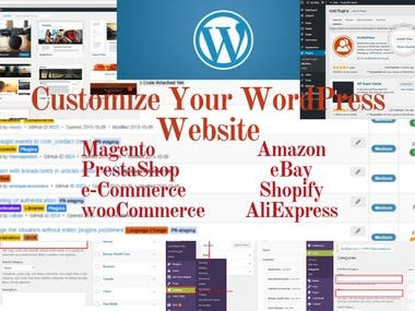 Service WordPress Customization Dropshipping Product Listing