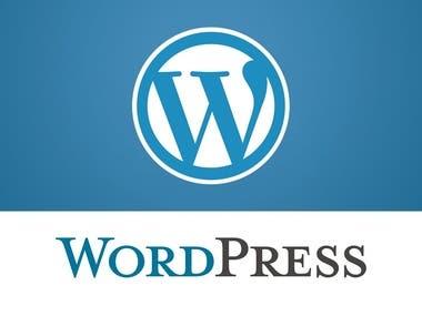 Wordpress Web Site Kurulumu, Tasarımı, Seo Optimizasyonu