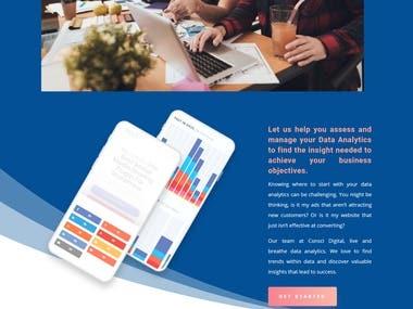 Web Design For CONSCI DIGITAL Agency