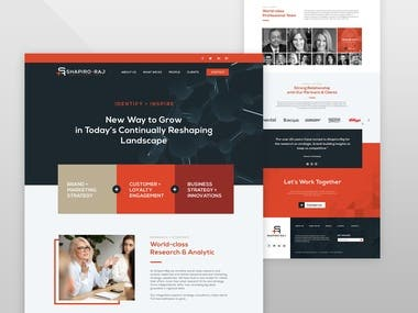 Web design for Business Consultant