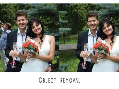Object Remove And Manipulation