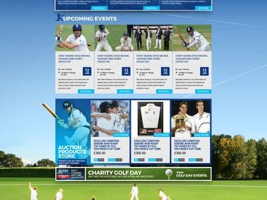 Cricket Addict Web Design