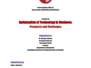Optimization of Technology in Business: