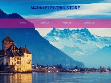 Home Page of an Electric Store