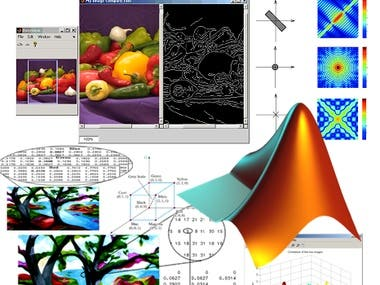 Do Matlab(Signal Processing ) & multisim related Tasks