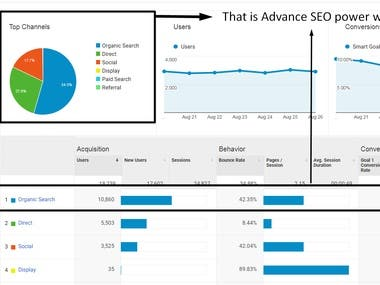 Advance SEO Service with High Traffic