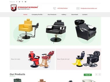 Website Design & Development for Salon Chairs India