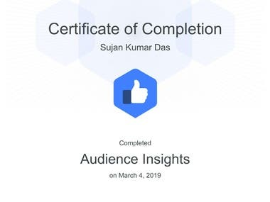 Audience Insights of Facebook Blueprint