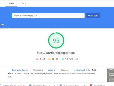 Google page peed Wordpress website