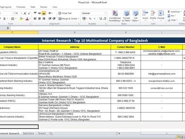 Internet Research Data entry