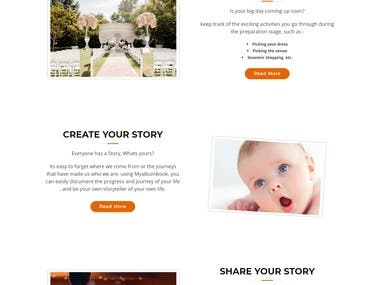 New WordPress Site