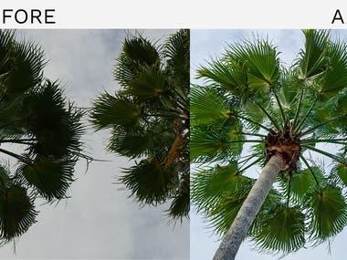 Image Editing & Developing 4