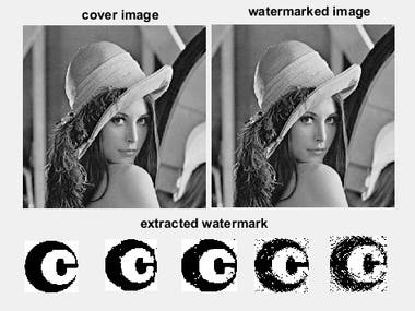 Cryptography & Watermarking & Steganography