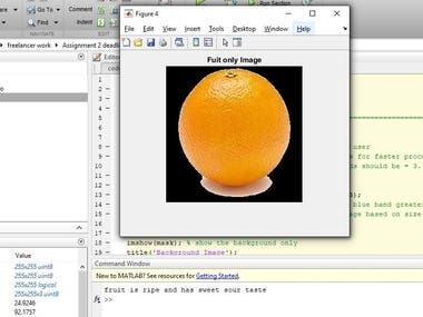 Image Processing MATLAB