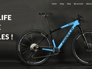 Designed & Developed Bike Selling Website