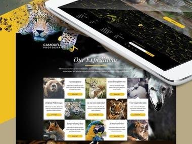 PSD Of Website