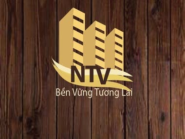 NTV , Real estate Logo Design