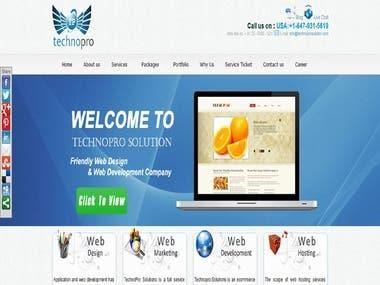 Web site Development and Mobile Development