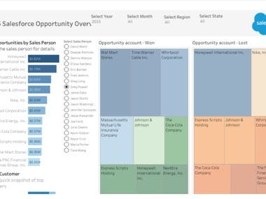 Sales Force Opportunity Dashboards