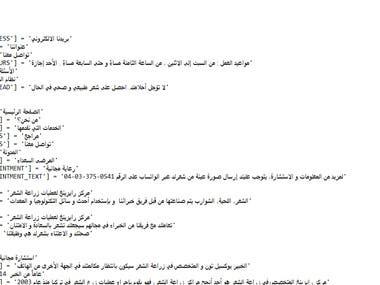 translating a website
