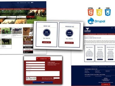 An e-commerce website for cattle sale and purchase