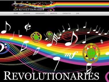 eCommerce-528revolutionary