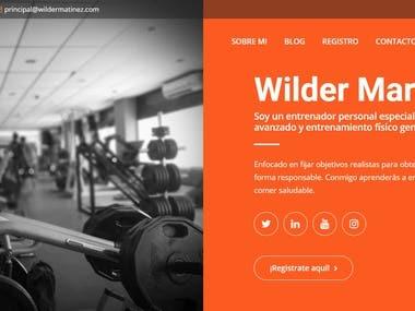Web Page Design + WordPress Theme