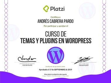 Creacion de Plugins y Temas de Wordpress