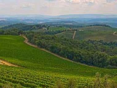 Le terre del Chianti