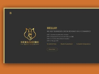 Landing Page Concept for Berkshire Hound