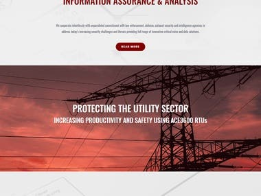 Design and Developed Cyber Security Website