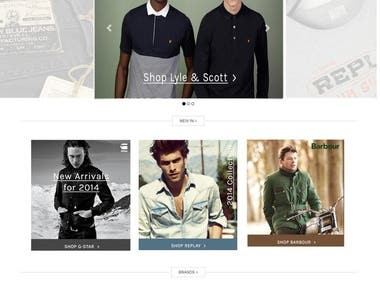 Wordpress Ecommerce Website