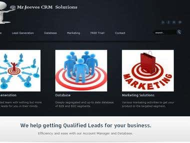 Business Website for email marketing,Lead Generation company