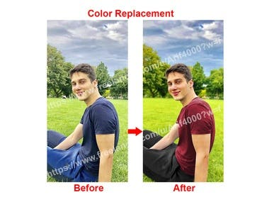 Color Replacement/ Color Change