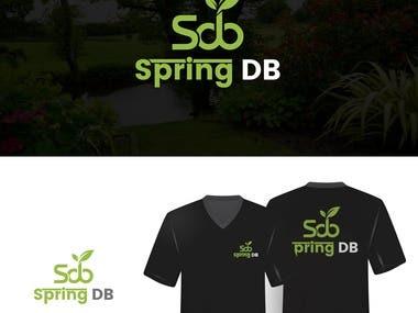 Spring DB